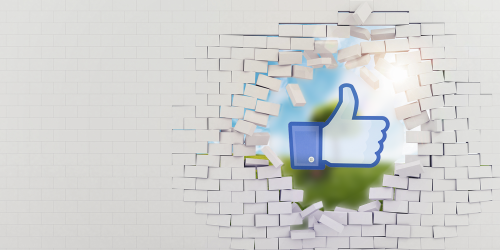Facebook 101: Beyond the Like