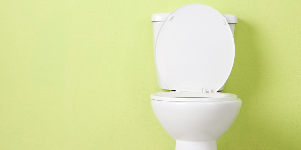 What can we learn from a $1000 Toilet Seat?